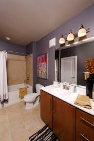 marvelous apartment bathroom ideas stupendous decorating for fascinating apartment bathroom ideas decor for college brown wooden cabinets drainboard with sink