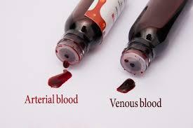 edible blood ultra realistic blood simulation of human blood
