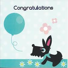 congratulations card congratulations card bailey