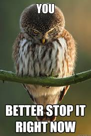 You Need To Stop Meme - 40 very funny stop meme pictures and photos of all the time