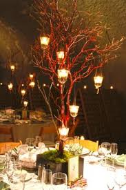 manzanita branches centerpieces mezzo vase to be base of manzanita branch centerpiece ariel j s
