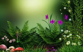 download nature flower wallpaper hd for desktop free images