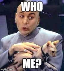 Who Me Meme - dr evil cat imgflip