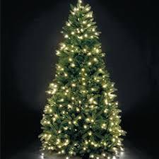 buy tree 7ft 6ft 8ft taskers tree shop