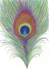pencil drawing of peacock feather 25 best ideas about feather