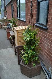 two hexagonal wooden planters with star jasmine plants and conical