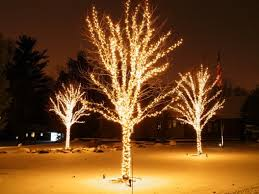 How To Decorate Outdoor Trees With Lights - the best 40 outdoor christmas lighting ideas that will leave you