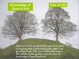 of garden of