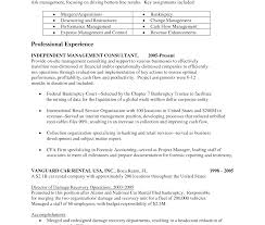 sle consultant resume independent it consultant resume peppappimple format