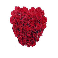 valentines day roses s day roses to india s day flowers to india