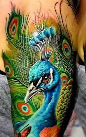45 awesome peacock feather ideas golfian com