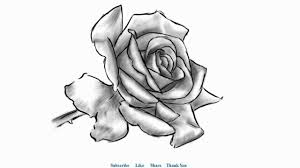 how to draw a beautiful rose with shading easy to draw youtube