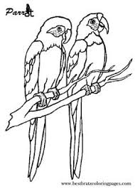 parrots coloring pages coloring page of a macaw parrot lovely parrot coloring page