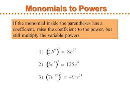 of monomials worksheet calleveryonedaveday