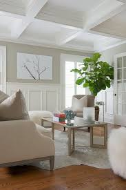 Silver Cowhide Rug White And Tan Room With Tall Wainscoting Transitional Living Room