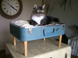 diy shabby chic pet bed diy shabby chic pet bed dekoration paper cakes finds your daily