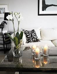 furniture orchid coffee table centerpiece strange plants determine your ambience decoration your living room with