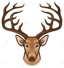 deer head clipart free clipartxtras