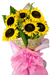 sunflower bouquets 6 sunflowers bouquet flower delivery philippines