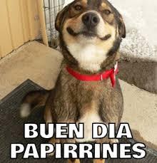 Buen Dia Meme - buen dia papirrines memes en quebolu