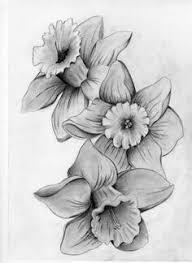 image result for daffodil tattoo tattoo ideas pinterest