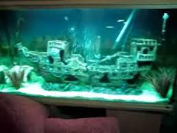 shipwreck fishtank