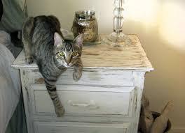 rebecca jensen distressed nightstand