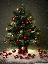 small christmas tree small christmas tree 4k hd desktop wallpaper for 4k ultra hd tv