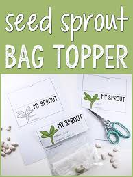 plants and seeds activities and lesson plans for pre k and