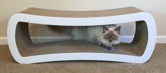 Cat Scratch Lounge Reader Cat Product Review Petfusion Jumbo Cat Scratcher Lounge