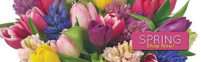 chicago flower delivery flowers online chicago flower delivery service il online