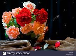 bouquet of roses in black vase against black background stock