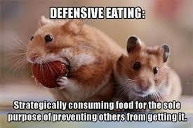 Eating Meme - defensive eating hamster meme