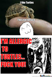 I Like Turtles Meme - rmx i like turtles by recyclebin meme center