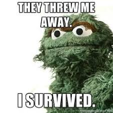 Oscar The Grouch Meme - oscar the grouch meme you re a grouch me pinterest meme