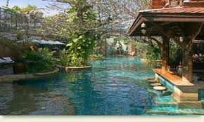 ideas small house with backyard pool ideas and green trees also