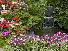 beautiful flower gardens waterfalls beautiful roses in the world