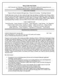 Non Profit Resume Executive Summary Resume Example Resume Sample