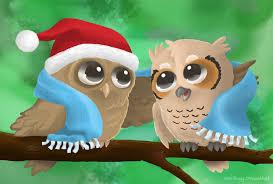 owl christmas free pc wallpaper christmas owl 52dazhew gallery
