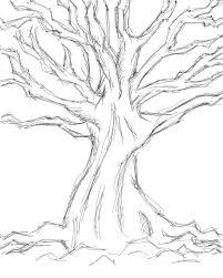 tree sketch 2 by quentinlars on deviantart