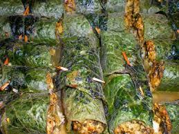 cuisine sauvage recettes cuisine sauvage feuilles de consoude farcies à la berce et céréales