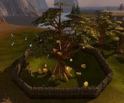 Fruit Trees Runescape - golden tree runescape wiki fandom powered by wikia