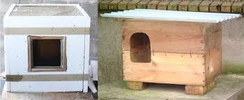 Construire Jardin D Hiver Un Abri Pour Chat Pour L U0027hiver