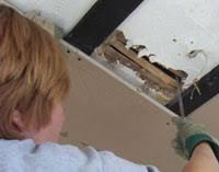 Repair Ceiling Hole by Repairing A Ceiling Hole Mending Holes In Plaster Ceilings Diy