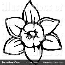 daffodil clipart 1183307 illustration by prawny
