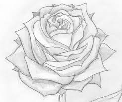 pencil drawings this is my first attempt at doing a shaded