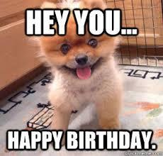 Cute Birthday Meme - happy birthday happy birthday pinterest happy birthday meme
