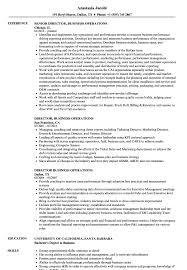 director of operations resume director business operations resume sles velvet