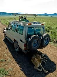 safari land cruiser safari vehicles overland trucks u0026 safari transportation