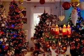 German Christmas Decorations Info christmas trees fill house of festive couple in rinteln germany